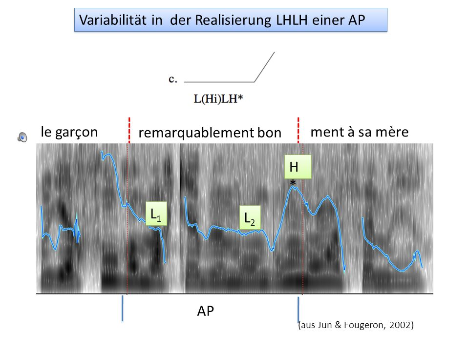 Variabilität in der Realisierung LHLH einer AP