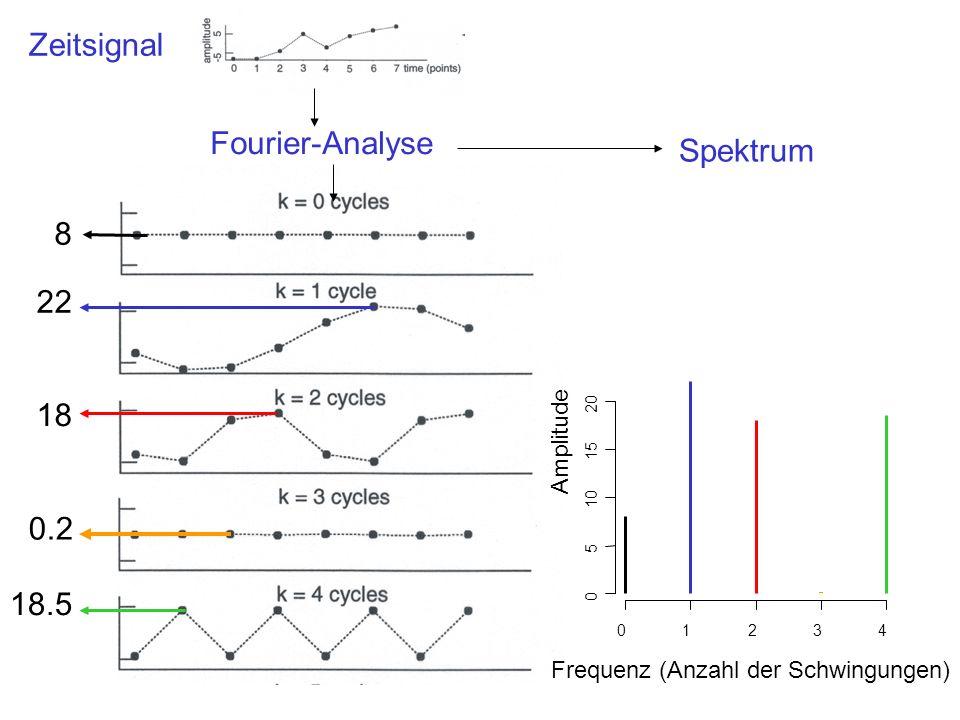 Zeitsignal Fourier-Analyse Spektrum 8 22 18 0.2 18.5 Amplitude