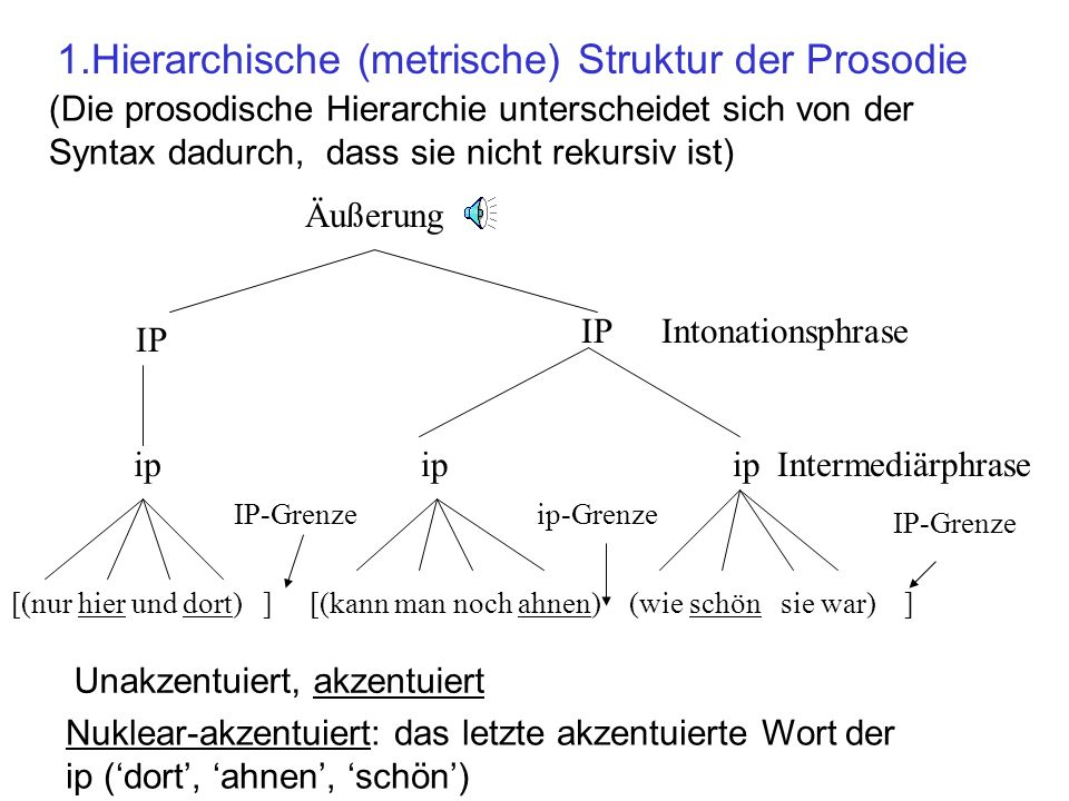 1.Hierarchische (metrische) Struktur der Prosodie