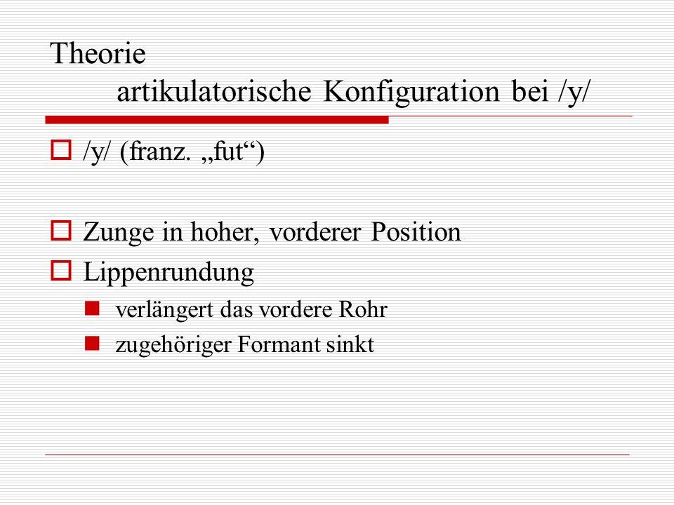 Theorie artikulatorische Konfiguration bei /y/