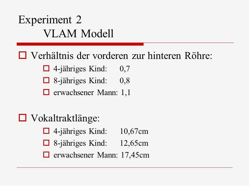 Experiment 2 VLAM Modell