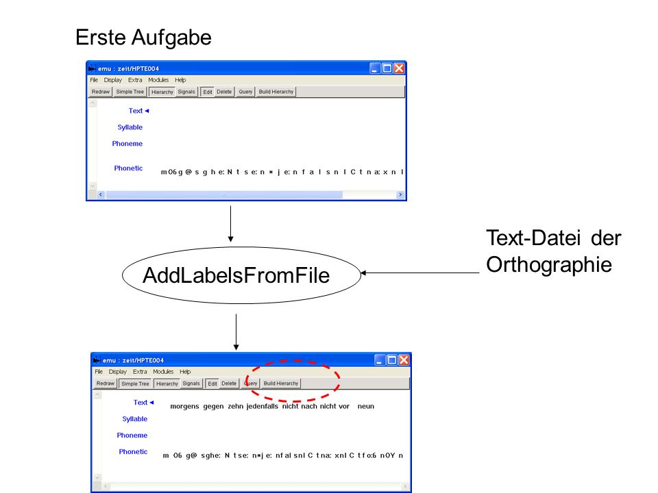 Erste Aufgabe Text-Datei der Orthographie AddLabelsFromFile