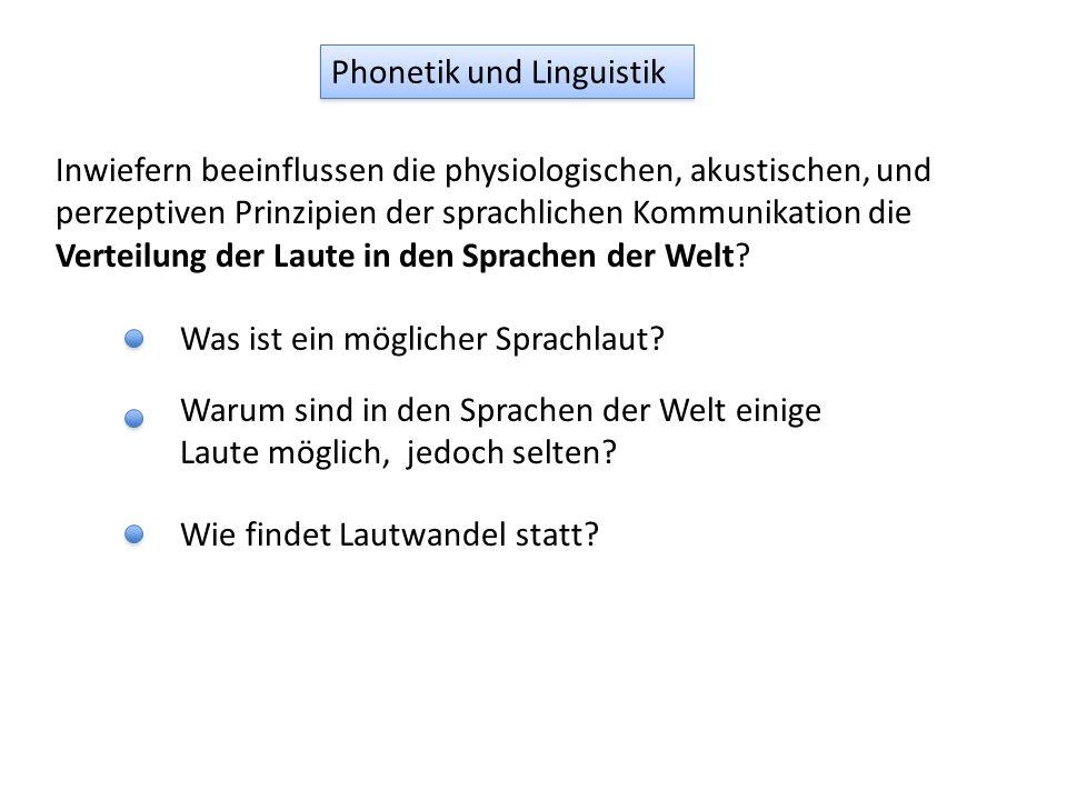 Phonetik und Linguistik