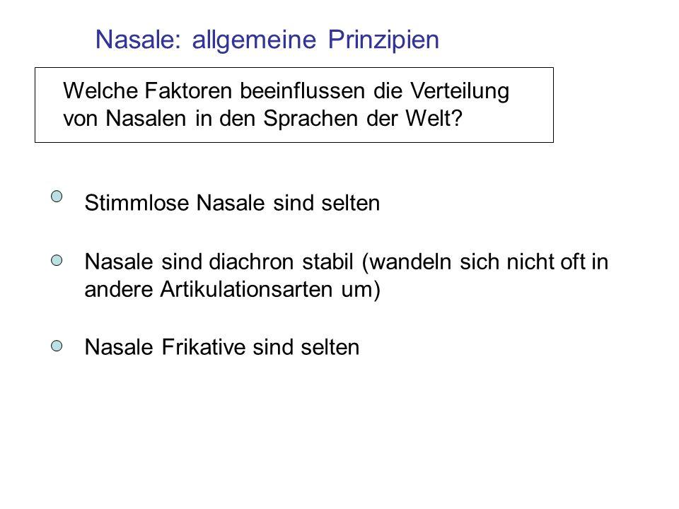 Nasale: allgemeine Prinzipien