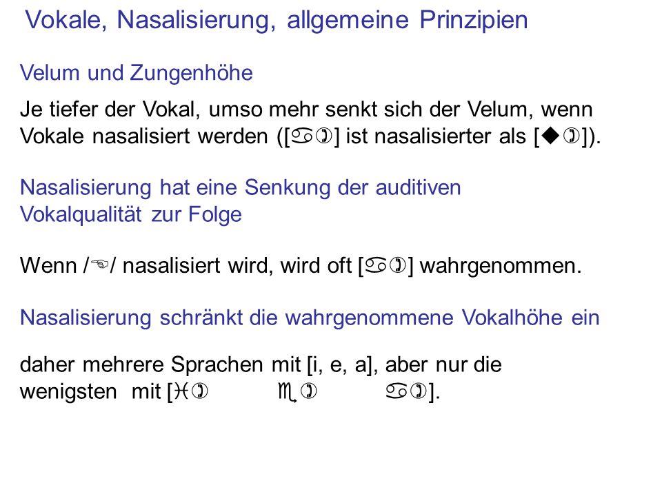 Vokale, Nasalisierung, allgemeine Prinzipien