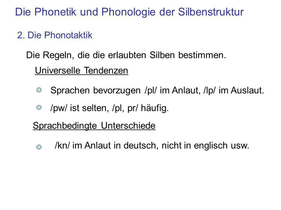 Die Phonetik und Phonologie der Silbenstruktur