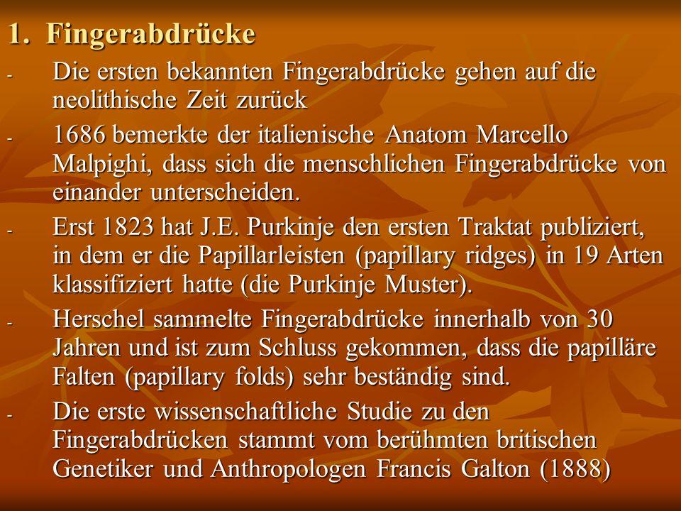 1. Fingerabdrücke Die ersten bekannten Fingerabdrücke gehen auf die neolithische Zeit zurück.