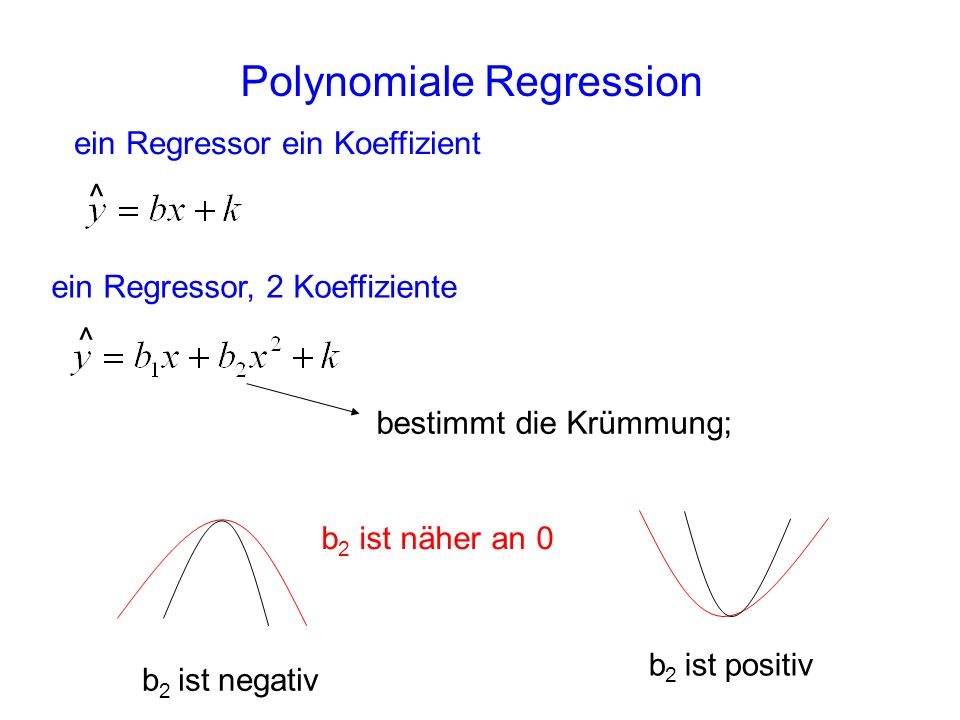 Polynomiale Regression