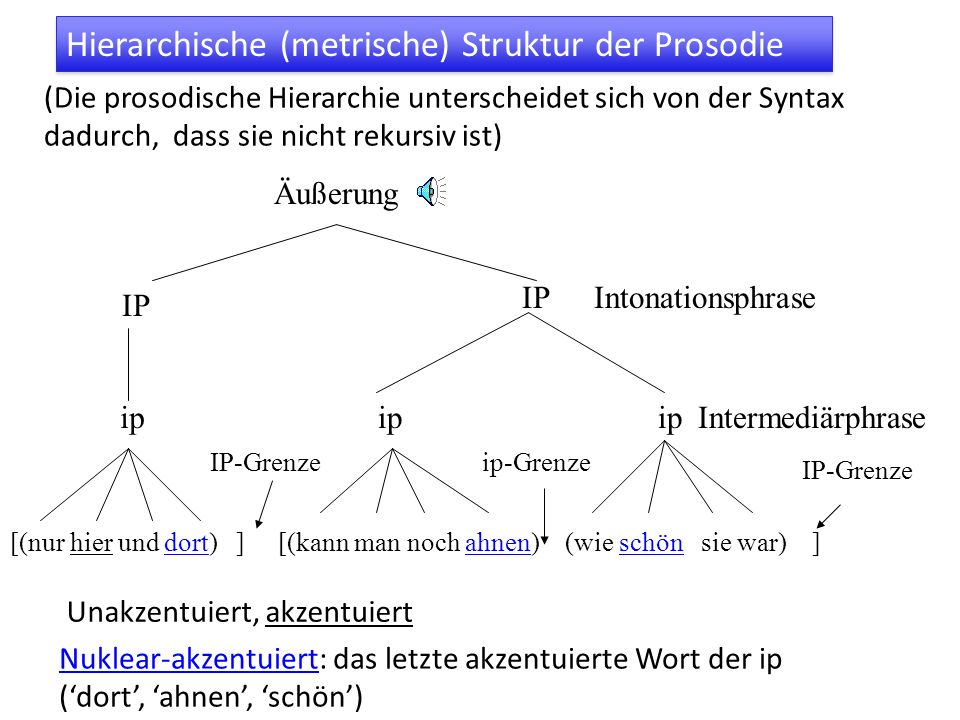 Hierarchische (metrische) Struktur der Prosodie