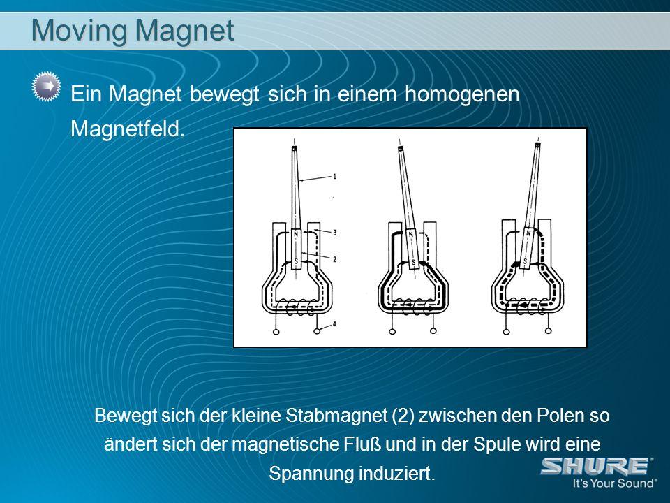 Moving Magnet Ein Magnet bewegt sich in einem homogenen Magnetfeld.