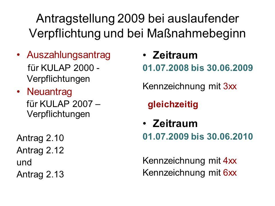 Antragstellung 2009 bei auslaufender Verpflichtung und bei Maßnahmebeginn