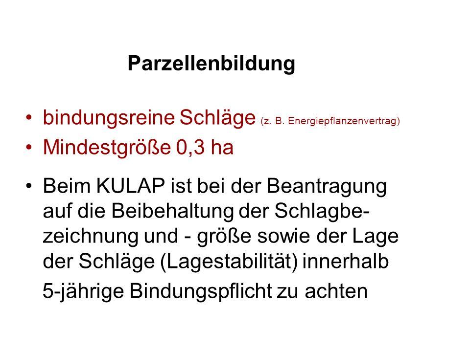 Parzellenbildung bindungsreine Schläge (z. B. Energiepflanzenvertrag)