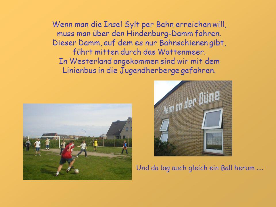Wenn man die Insel Sylt per Bahn erreichen will, muss man über den Hindenburg-Damm fahren. Dieser Damm, auf dem es nur Bahnschienen gibt, führt mitten durch das Wattenmeer.