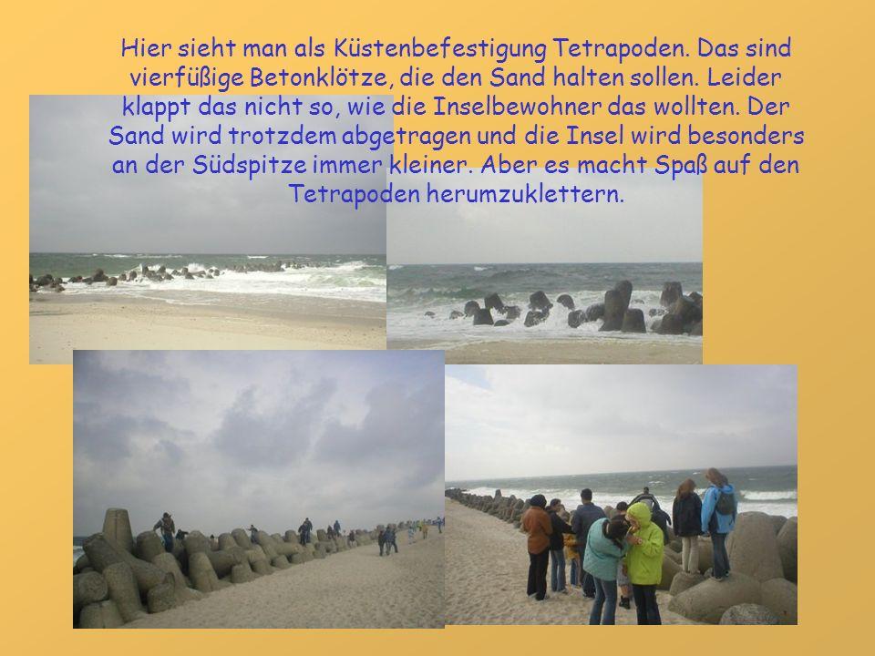Hier sieht man als Küstenbefestigung Tetrapoden