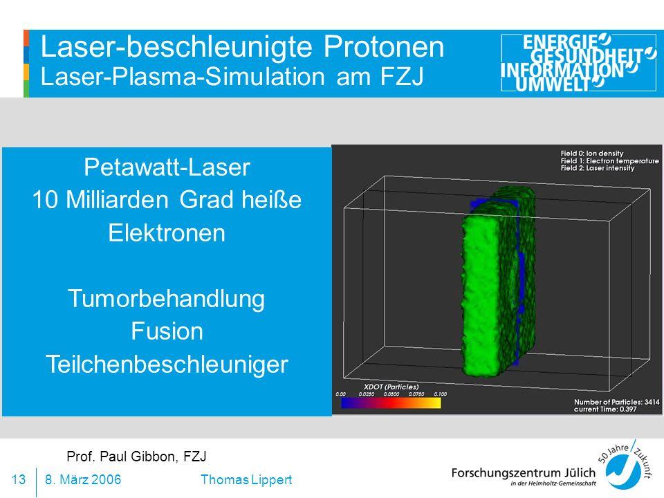 Laser-beschleunigte Protonen Laser-Plasma-Simulation am FZJ