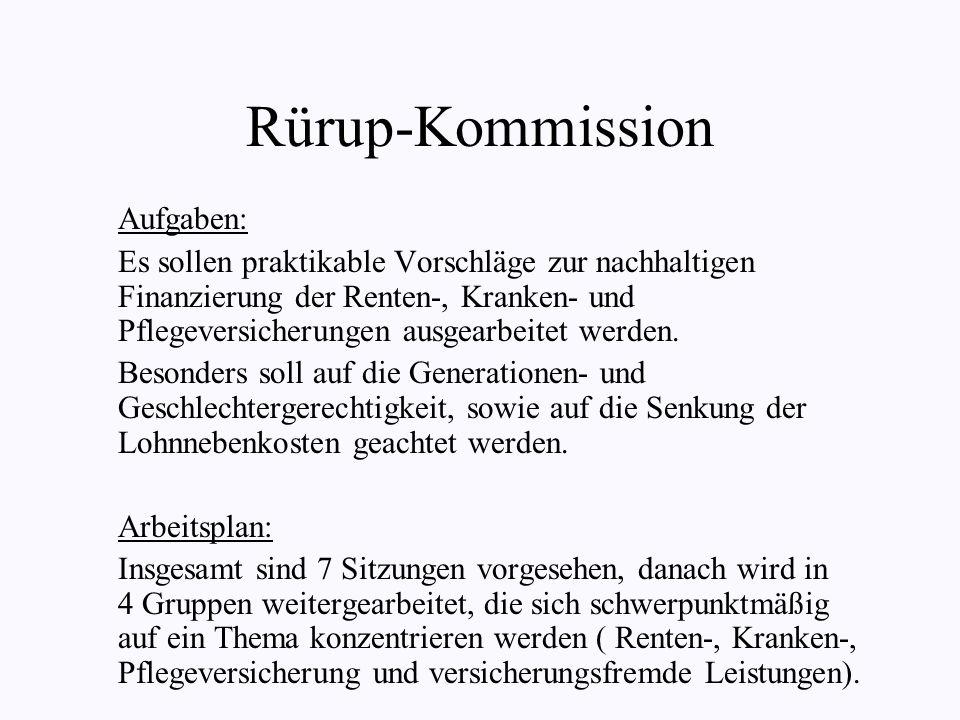 Rürup-Kommission Aufgaben: