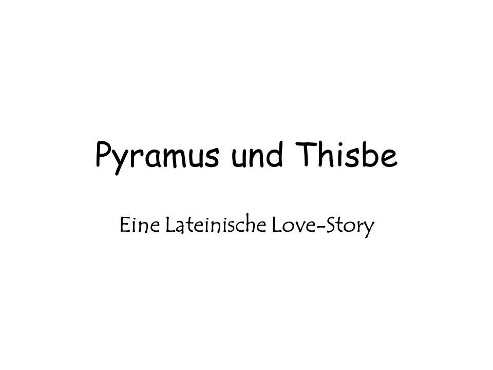 Eine Lateinische Love-Story