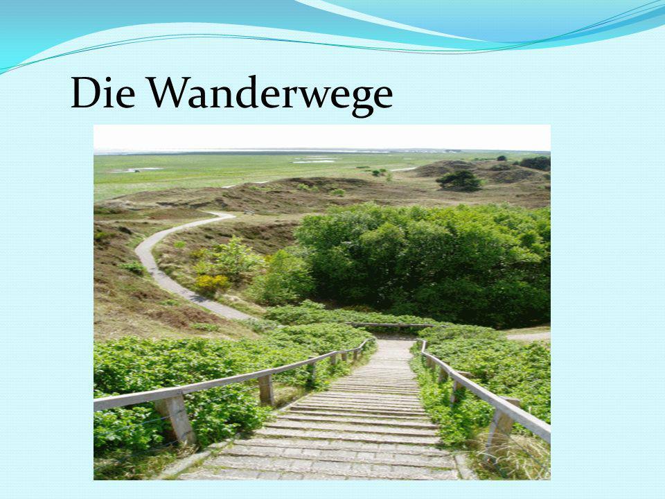 Die Wanderwege