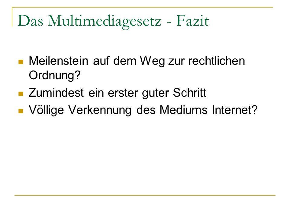 Das Multimediagesetz - Fazit