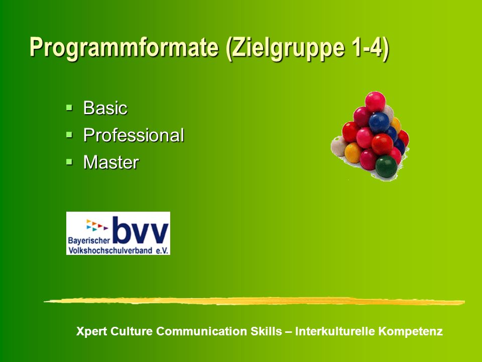 Programmformate (Zielgruppe 1-4)