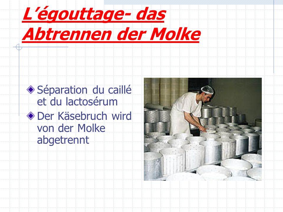 L'égouttage- das Abtrennen der Molke