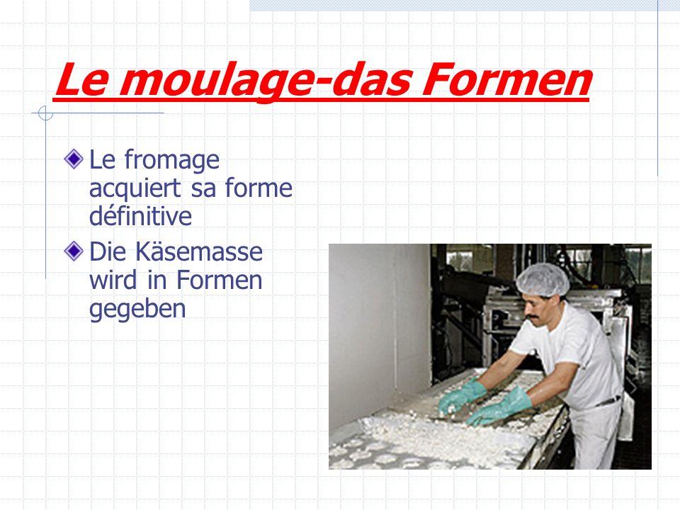 Le moulage-das Formen Le fromage acquiert sa forme définitive