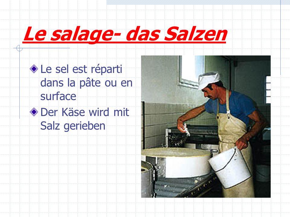 Le salage- das Salzen Le sel est réparti dans la pâte ou en surface