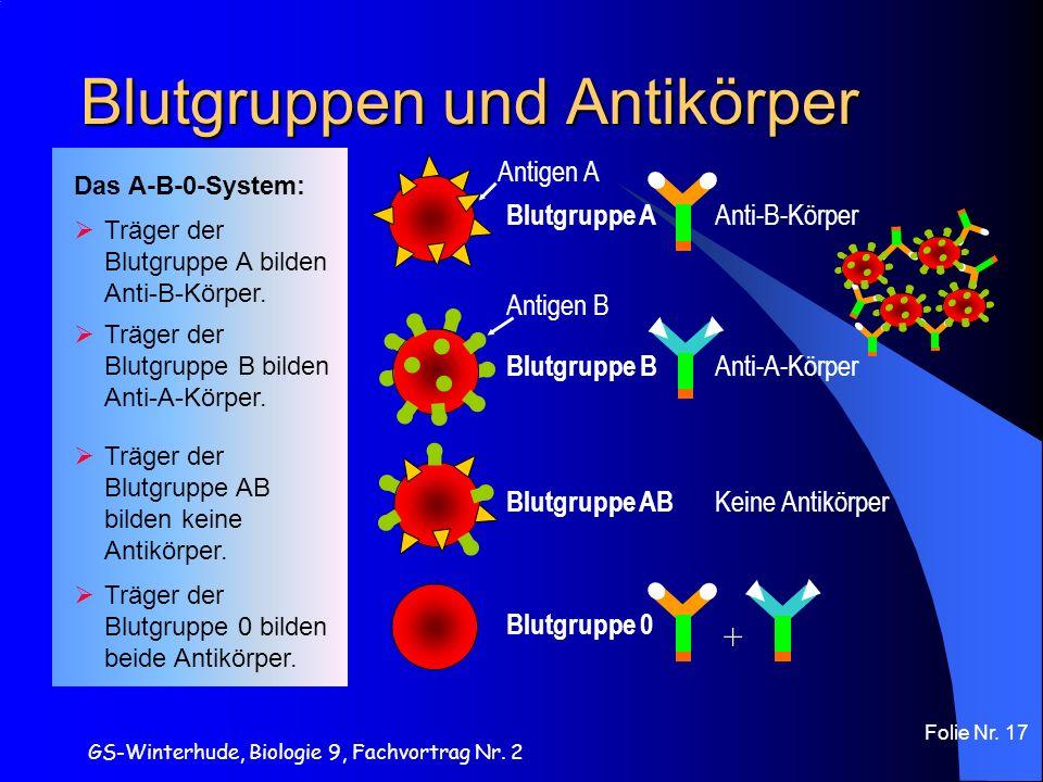 Blutgruppen und Antikörper