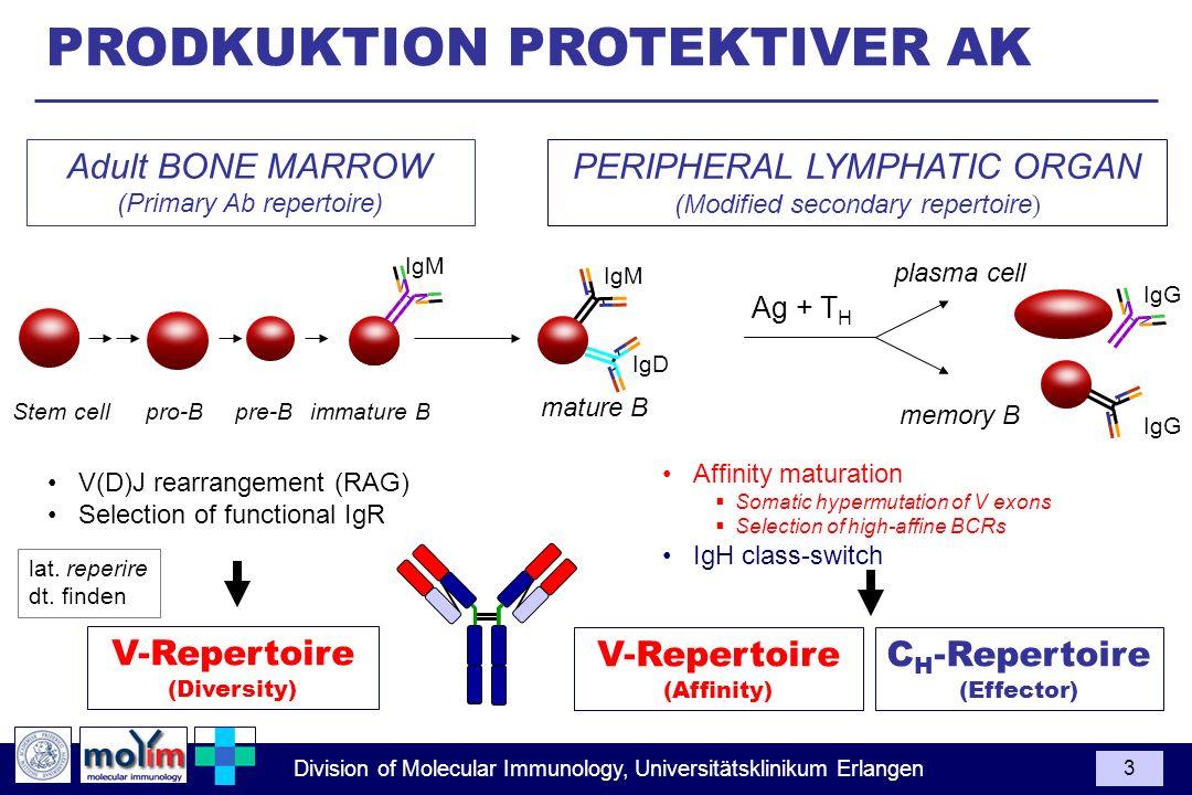 PRODKUKTION PROTEKTIVER AK