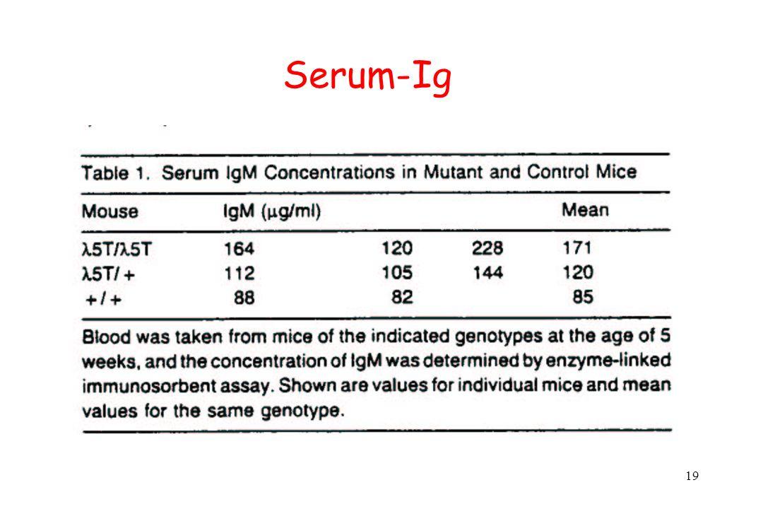 Serum-Ig