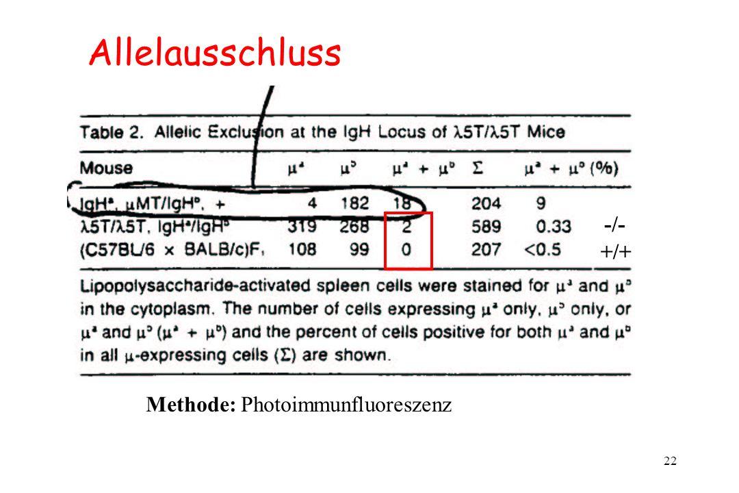 Allelausschluss -/- +/+ Methode: Photoimmunfluoreszenz