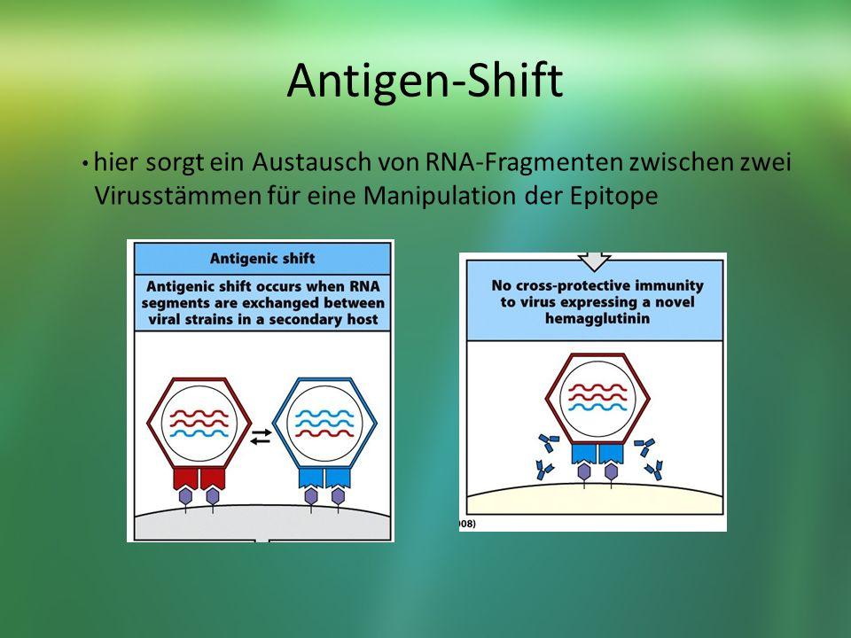 Antigen-Shift Virusstämmen für eine Manipulation der Epitope