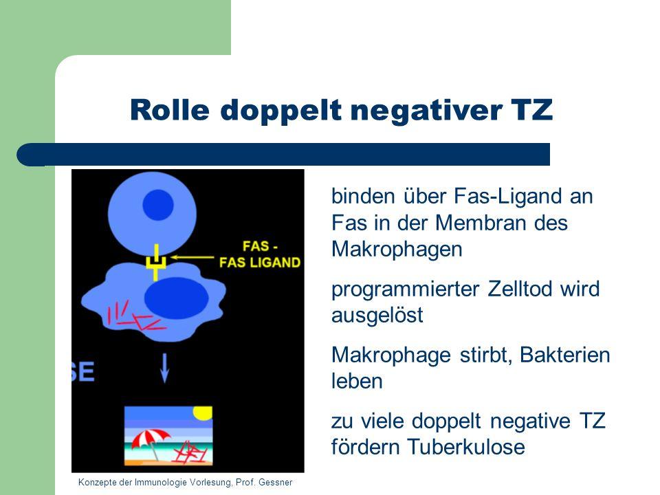 Rolle doppelt negativer TZ
