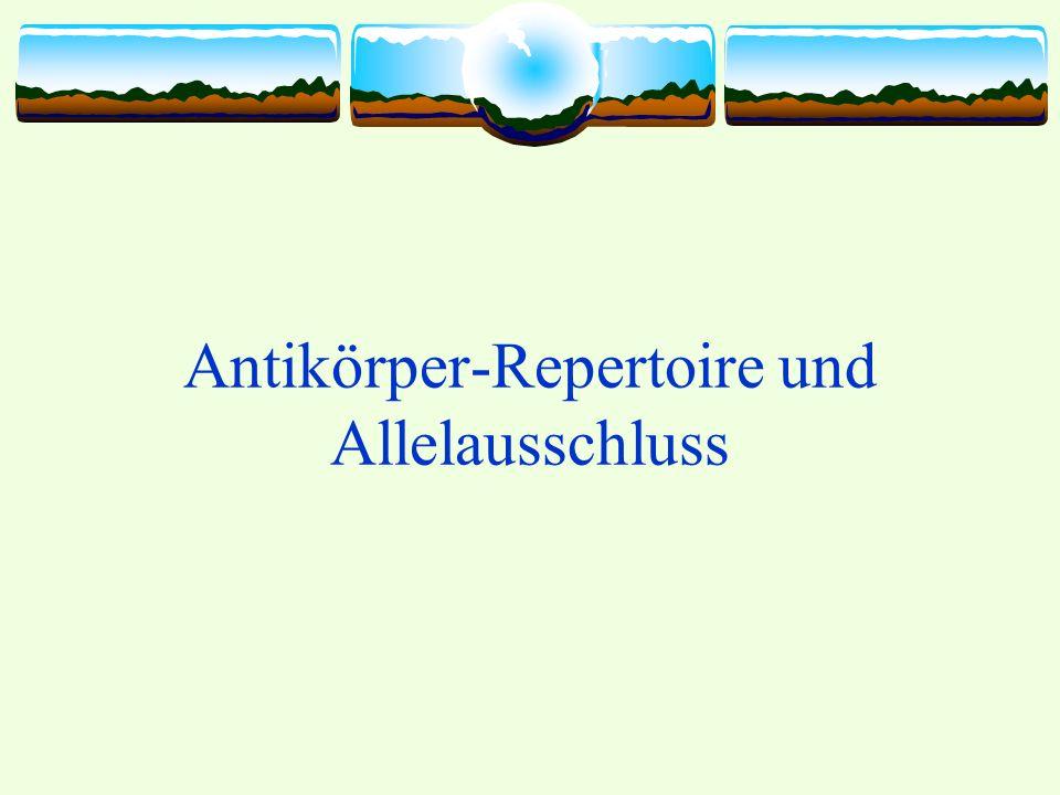 Antikörper-Repertoire und Allelausschluss