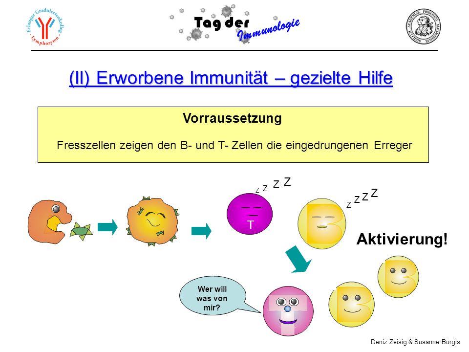(II) Erworbene Immunität – gezielte Hilfe