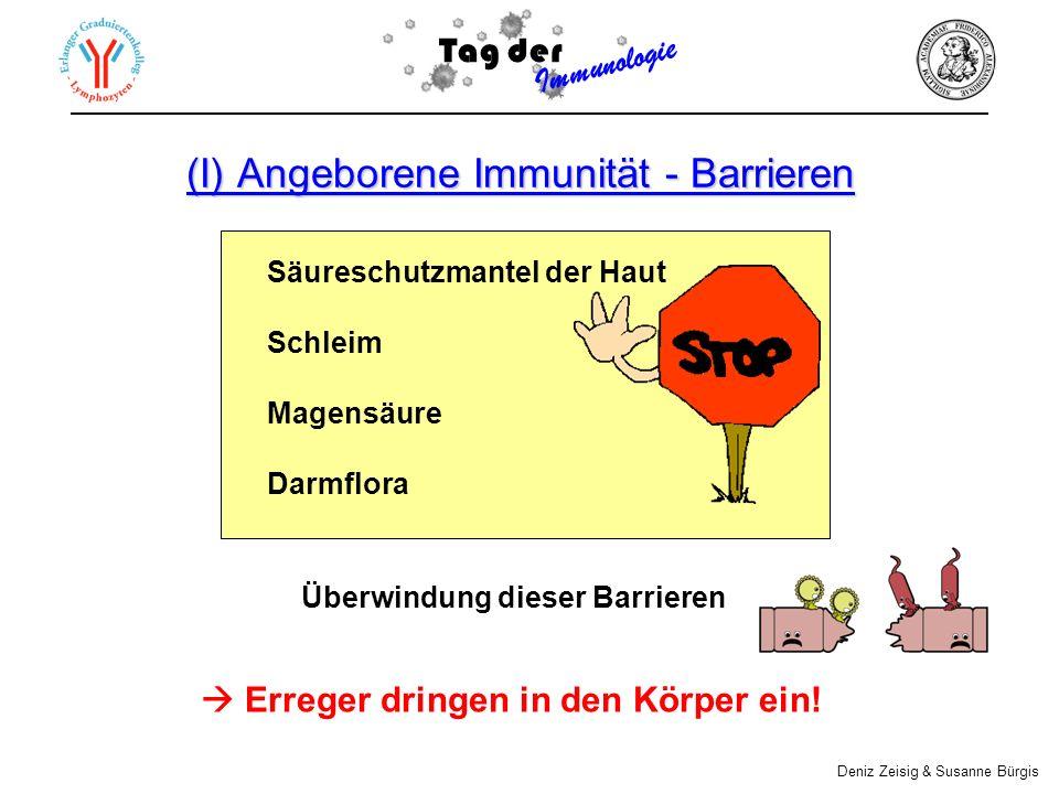 (I) Angeborene Immunität - Barrieren