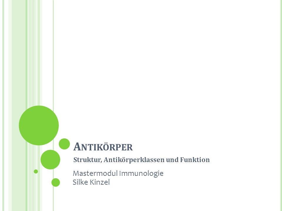Struktur, Antikörperklassen und Funktion