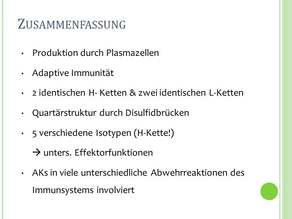 Zusammenfassung Produktion durch Plasmazellen Adaptive Immunität