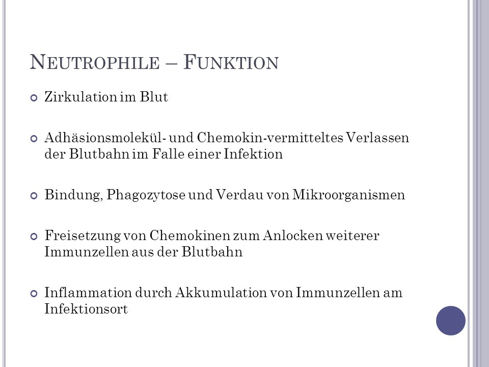 Neutrophile – Funktion