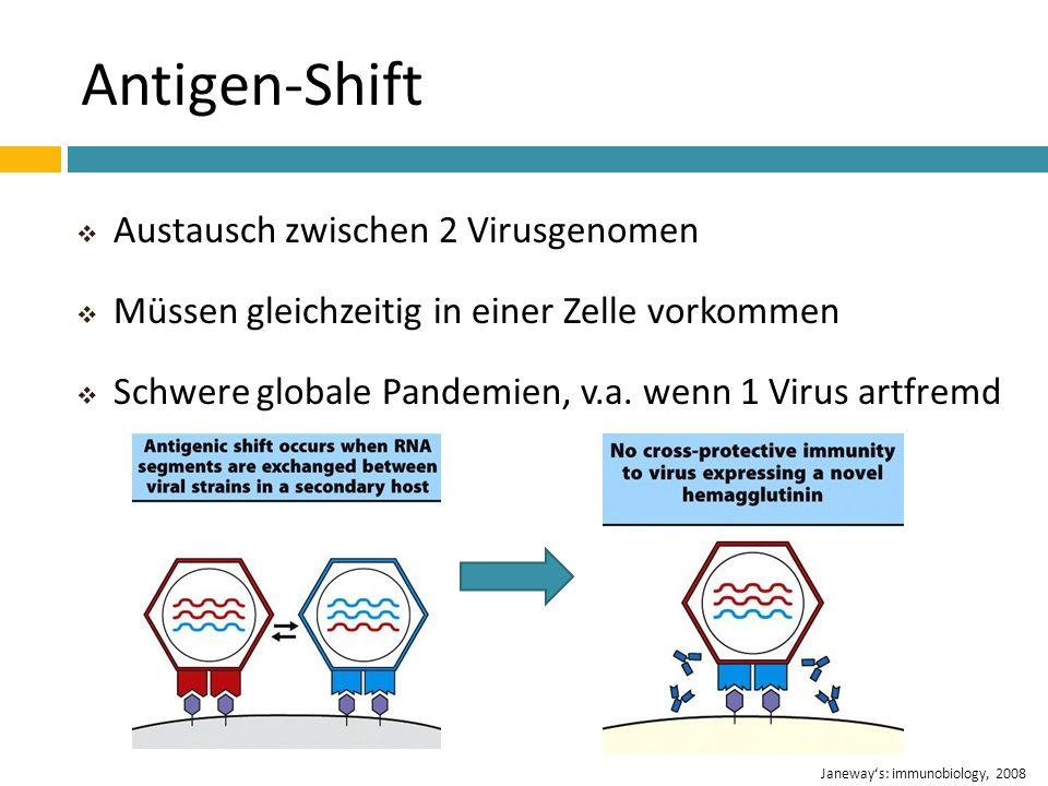 Antigen-Shift Austausch zwischen 2 Virusgenomen