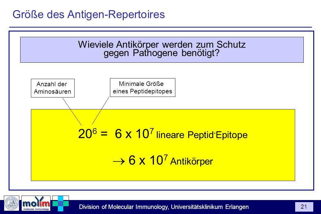 206 = 6 x 107 lineare Peptid-Epitope  6 x 107 Antikörper