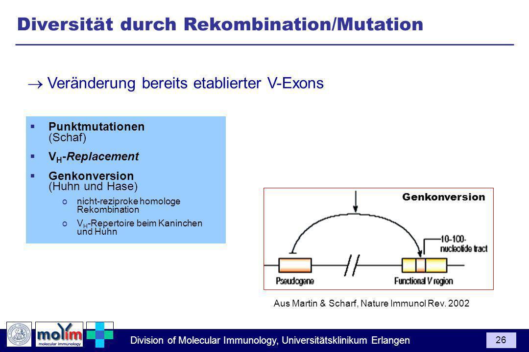 Diversität durch Rekombination/Mutation
