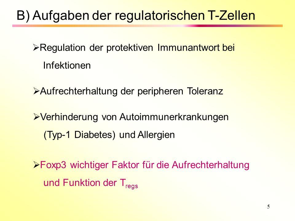 B) Aufgaben der regulatorischen T-Zellen