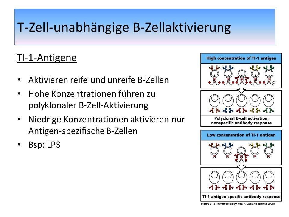 T-Zell-unabhängige B-Zellaktivierung