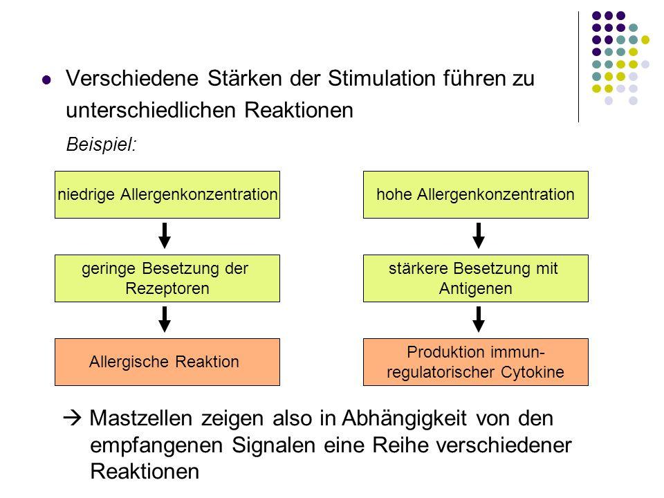 Verschiedene Stärken der Stimulation führen zu unterschiedlichen Reaktionen
