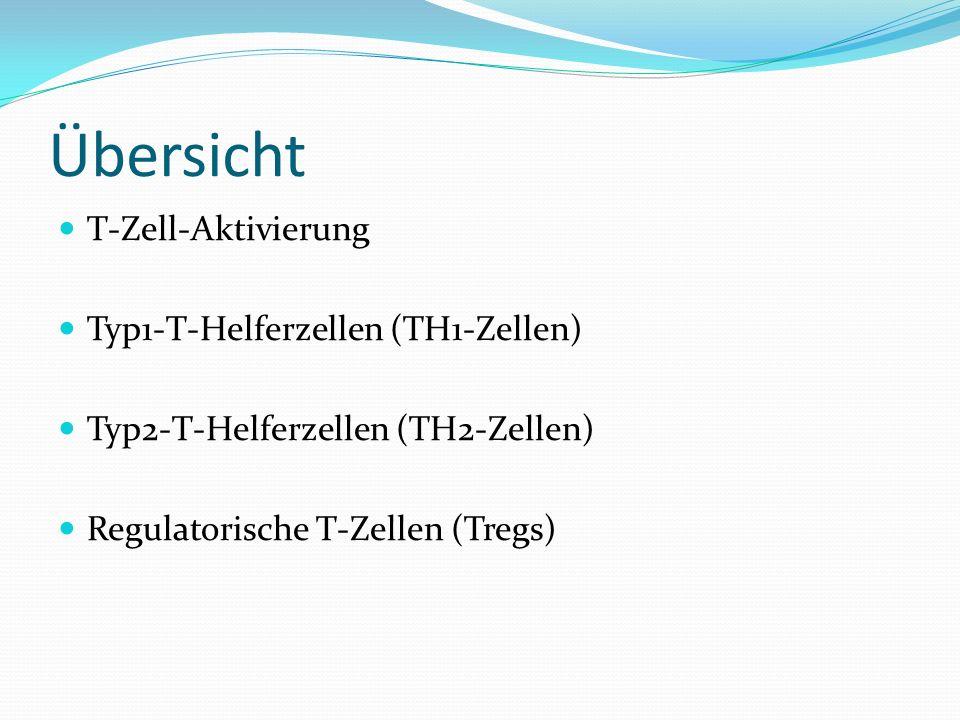 Übersicht T-Zell-Aktivierung Typ1-T-Helferzellen (TH1-Zellen)