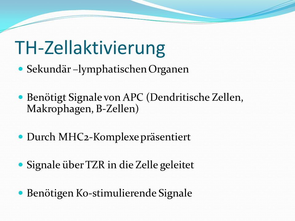 TH-Zellaktivierung Sekundär –lymphatischen Organen