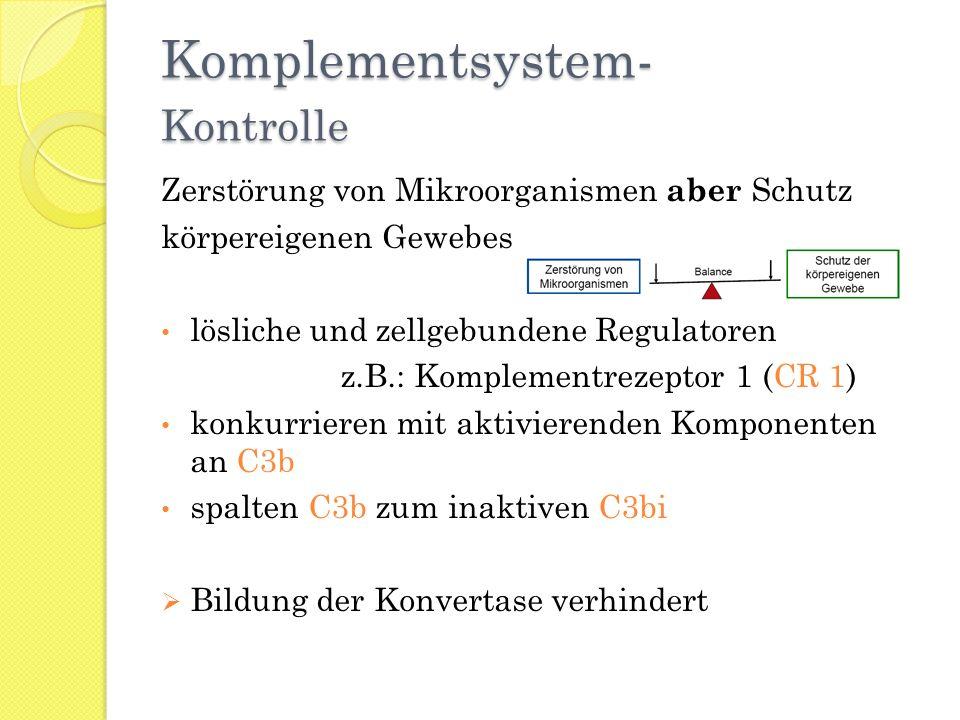 Komplementsystem- Kontrolle