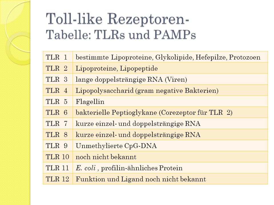 Toll-like Rezeptoren- Tabelle: TLRs und PAMPs