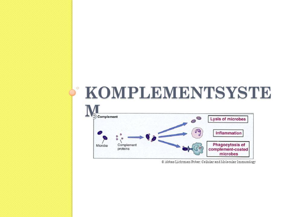 Komplementsystem © Abbas/Lichtman/Pober: Cellular and Molecular Immunology